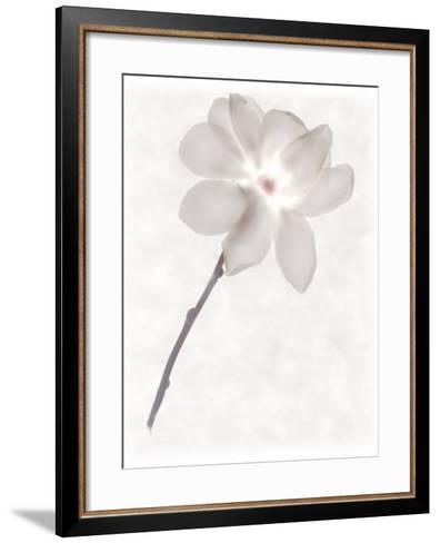 Still Life of a Flower-Joyce Tenneson-Framed Art Print