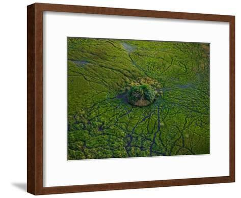 Aerial View of Animal Trails Leading to a Small Island in the Delta-Beverly Joubert-Framed Art Print