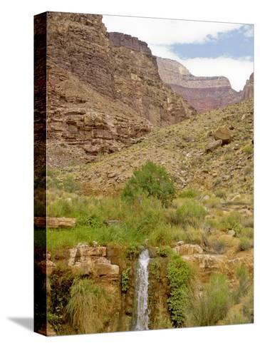 Waterfall Flows Through a Desert-David Edwards-Stretched Canvas Print