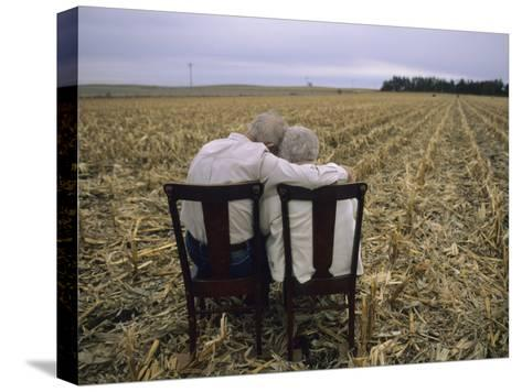 Elderly Couple Embrace in a Cornfield-Joel Sartore-Stretched Canvas Print