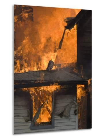 Local Fire Fighters Use a Controlled Burning of a House for Practice-Joel Sartore-Metal Print