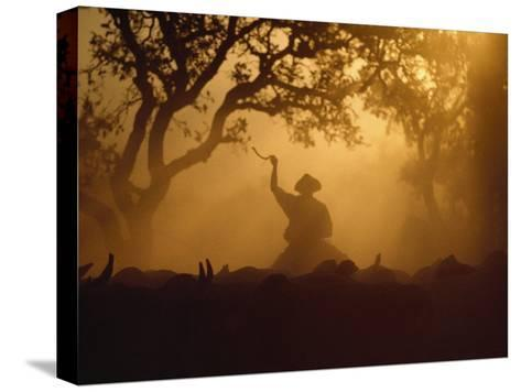 Cowboy and Cattle Silhouetted Against the Setting Sun-Joel Sartore-Stretched Canvas Print