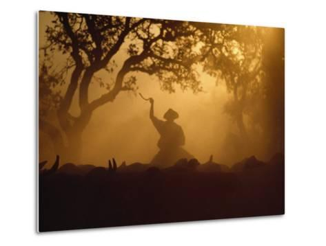 Cowboy and Cattle Silhouetted Against the Setting Sun-Joel Sartore-Metal Print