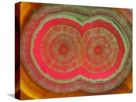Polished Slice of Stalactite of Rhodochrosite, Manganese Carbonate-John Cancalosi-Stretched Canvas Print