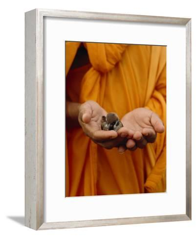 Buddhist Monk in a Saffron Robe Holding a Baby Bird in His Hands-xPacifica-Framed Art Print
