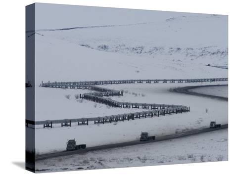 Alaska Pipeline and the Dalton Highway, Alaska-Michael S^ Quinton-Stretched Canvas Print
