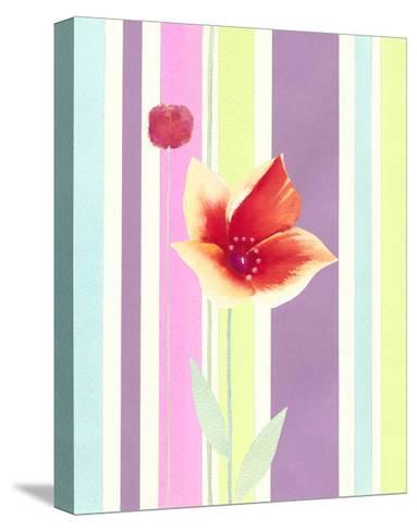 Flowers & Stripes IV-Vision Studio-Stretched Canvas Print