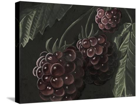 Midnight Raspberries-Megan Meagher-Stretched Canvas Print