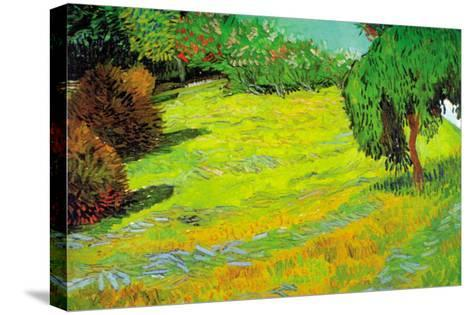 Sunny Lawn-Vincent van Gogh-Stretched Canvas Print