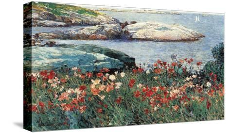 Poppies, Isle of Shoals-Childe Hassam-Stretched Canvas Print