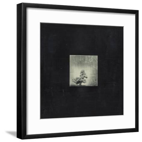 Bonsai Cave Tree-OM-Framed Art Print