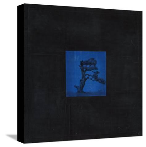 Bonsai Immortality Tree-OM-Stretched Canvas Print