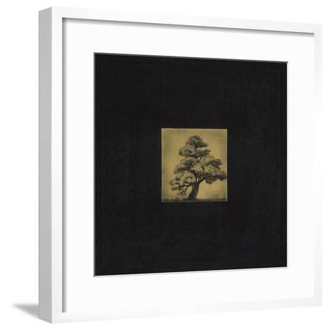 Bonsai Sacred Tree-OM-Framed Art Print