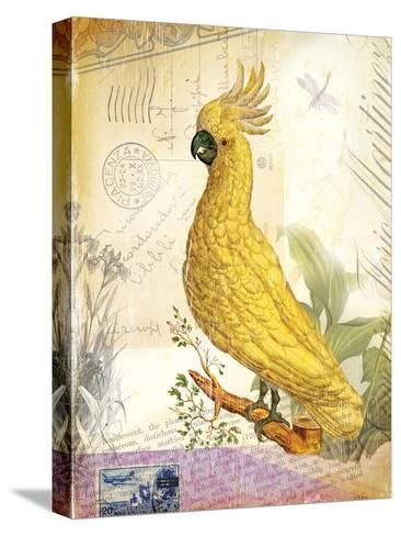 Vintage Botanical Cockatoo Print-Bessie Pease Gutmann-Stretched Canvas Print
