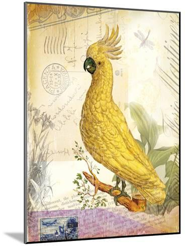 Vintage Botanical Cockatoo Print-Bessie Pease Gutmann-Mounted Giclee Print