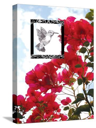 Hummingbird--Stretched Canvas Print