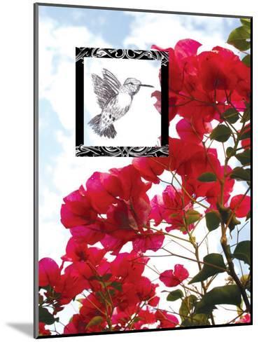 Hummingbird--Mounted Giclee Print