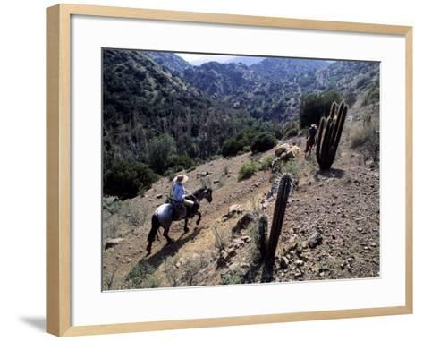 Men on Horseback Carry Supplies to Cattle Ranch on the Outskirts of Santiago, Chile, South America-Aaron McCoy-Framed Art Print