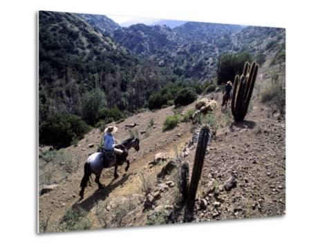 Men on Horseback Carry Supplies to Cattle Ranch on the Outskirts of Santiago, Chile, South America-Aaron McCoy-Metal Print