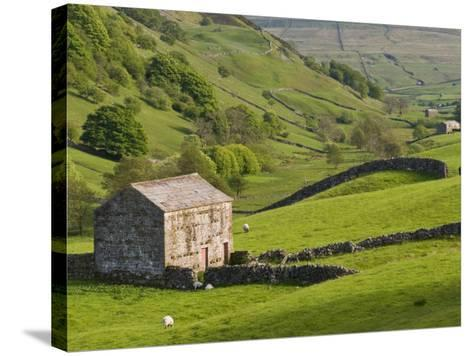 Typical Stone Barns Near Keld in Swaledale, Yorkshire Dales National Park, Yorkshire, England-John Woodworth-Stretched Canvas Print