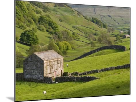Typical Stone Barns Near Keld in Swaledale, Yorkshire Dales National Park, Yorkshire, England-John Woodworth-Mounted Photographic Print