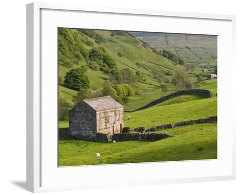 Typical Stone Barns Near Keld in Swaledale, Yorkshire Dales National Park, Yorkshire, England-John Woodworth-Framed Art Print