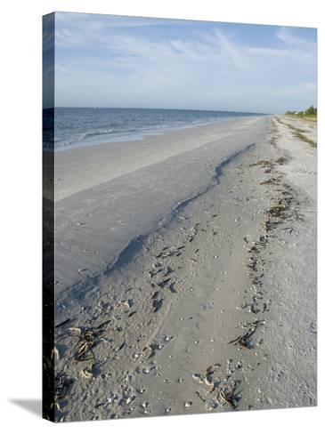 Beach, Sanibel Island, Gulf Coast, Florida, United States of America, North America-Robert Harding-Stretched Canvas Print