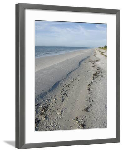 Beach, Sanibel Island, Gulf Coast, Florida, United States of America, North America-Robert Harding-Framed Art Print