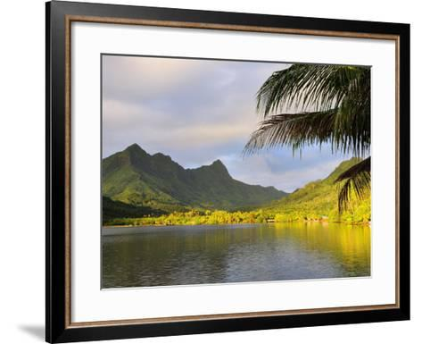 Faaroa Bay and Mount Oropiro, Raiatea, French Polynesia, South Pacific Ocean, Pacific-Jochen Schlenker-Framed Art Print