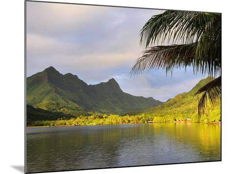 Faaroa Bay and Mount Oropiro, Raiatea, French Polynesia, South Pacific Ocean, Pacific-Jochen Schlenker-Mounted Photographic Print
