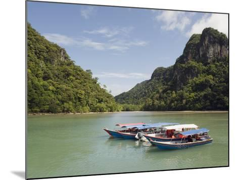 Colourful Boats, Langkawi Island, Kedah State, Malaysia, Southeast Asia, Asia-Christian Kober-Mounted Photographic Print
