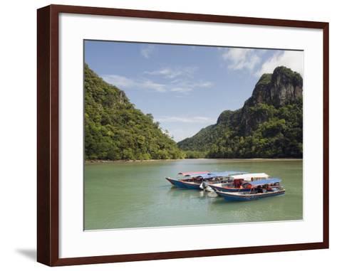 Colourful Boats, Langkawi Island, Kedah State, Malaysia, Southeast Asia, Asia-Christian Kober-Framed Art Print