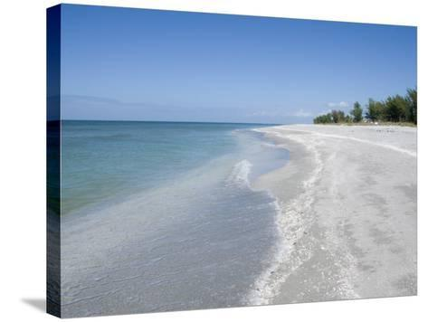Beach Covered in Shells, Captiva Island, Gulf Coast, Florida, United States of America-Robert Harding-Stretched Canvas Print