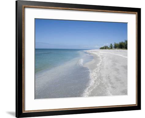 Beach Covered in Shells, Captiva Island, Gulf Coast, Florida, United States of America-Robert Harding-Framed Art Print