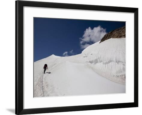 Climbing Mount Cevedale, 3769 M, Ortler Alps, South Tyrol, Italy, Europe-Carlo Morucchio-Framed Art Print