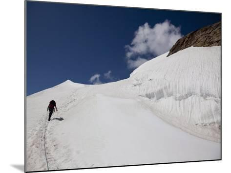 Climbing Mount Cevedale, 3769 M, Ortler Alps, South Tyrol, Italy, Europe-Carlo Morucchio-Mounted Photographic Print