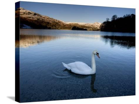 Grasmere, Near Ambleside, Lake District National Park, Cumbria, England, UK-Lee Frost-Stretched Canvas Print
