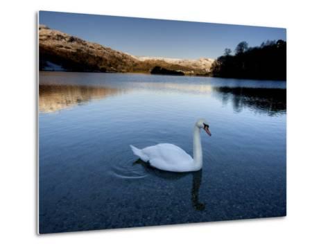Grasmere, Near Ambleside, Lake District National Park, Cumbria, England, UK-Lee Frost-Metal Print