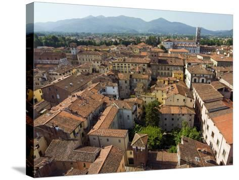 View of Lucca from Torre Guinigi, Lucca, Tuscany, Italy, Europe-Nico Tondini-Stretched Canvas Print