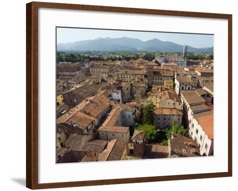 View of Lucca from Torre Guinigi, Lucca, Tuscany, Italy, Europe-Nico Tondini-Framed Art Print