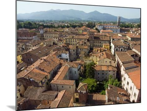 View of Lucca from Torre Guinigi, Lucca, Tuscany, Italy, Europe-Nico Tondini-Mounted Photographic Print