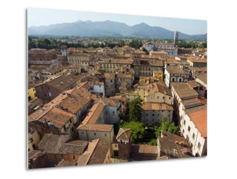 View of Lucca from Torre Guinigi, Lucca, Tuscany, Italy, Europe-Nico Tondini-Metal Print