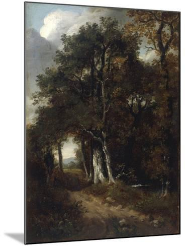 A Woodland Scene, c.1801-John Constable-Mounted Giclee Print