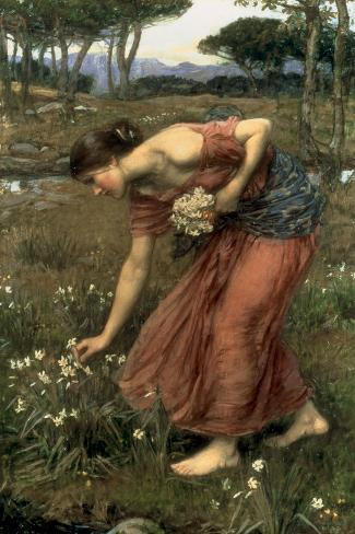 Narcissus, 1912-John William Waterhouse-Stretched Canvas Print