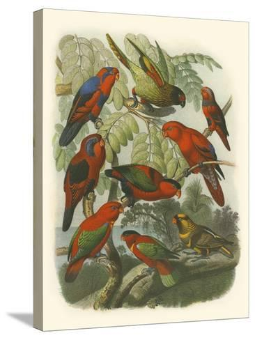 Red Cassel Birds II-Cassell-Stretched Canvas Print