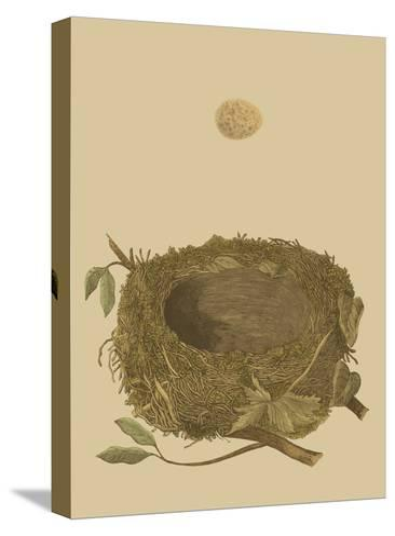 Antique Nest and Egg I-Reverend Francis O^ Morris-Stretched Canvas Print