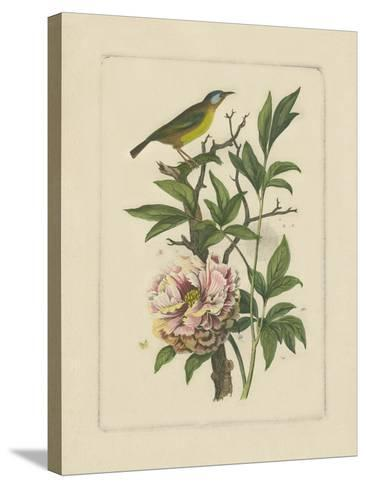 Exotic Bird and Botanical I--Stretched Canvas Print