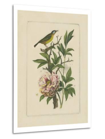 Exotic Bird and Botanical I--Metal Print