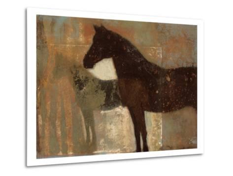 Weathered Equine II-Norman Wyatt Jr^-Metal Print