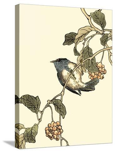 Oriental Bird on Branch III-Vision Studio-Stretched Canvas Print